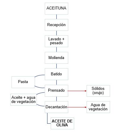 Proceso de elaboración de aceite de oliva artesanal
